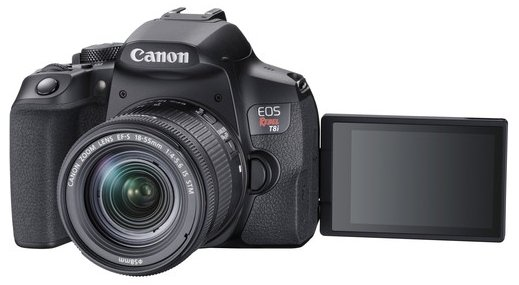 Read more about the article The Best Canon Cameras with Flip Screen (2021 Review)