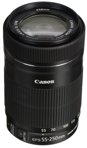 Canon EF-S STM 55-250mm lens with image stabilizer system